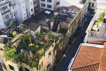 Roof-top garden, Athens, Greece, Europe