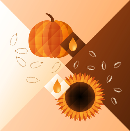 pumpkin seeds: illustration of pumpkin and sunflower. Oil and seeds of them.