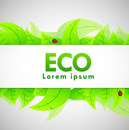Ecology Banner with leaves and ladybugs Stock Vector - 11703737