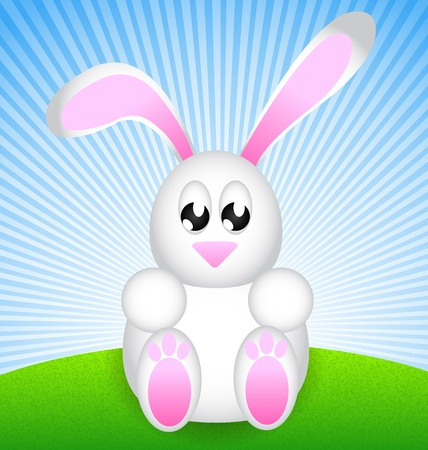 green day baby blue background: White Easter Rabbit sitting on green meadow