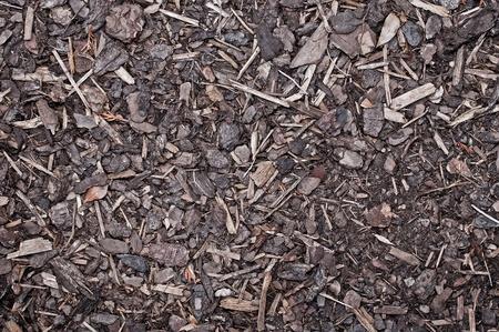 bark mulch: Mulch Bark on ground Texture