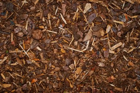 paillis: Bark Mulch sur la texture du sol