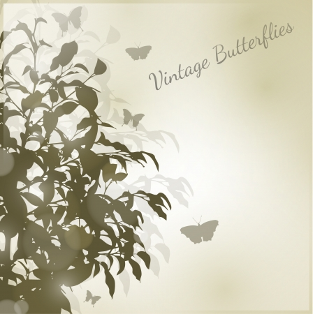 Brown Butterfly vintage silhouette background Vector