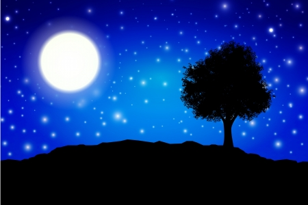 in midnight: Midnight silhouette with moon and tree