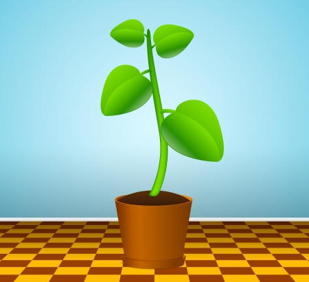 Green plant in flowerpot Stock Vector - 13707576