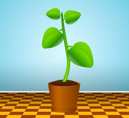 Green plant in flowerpot Stock Vector - 13707576