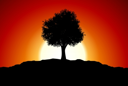 red sunset: Sunset with black tree silhouette Illustration