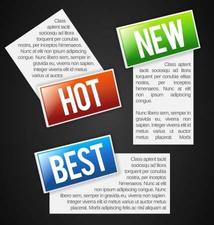 Colorful Labels with text field Vector