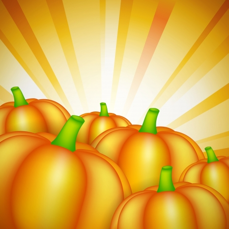 Harvest theme with pumpkins and sunshine Stock Vector - 15528930