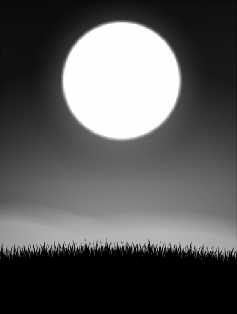 grayscale: Midnight on meadow grayscale Illustration