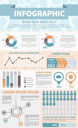 Common Infographic Template with graphs and icons Vector