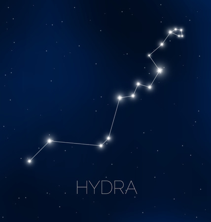 hydra: Hydra constellation in night sky Illustration