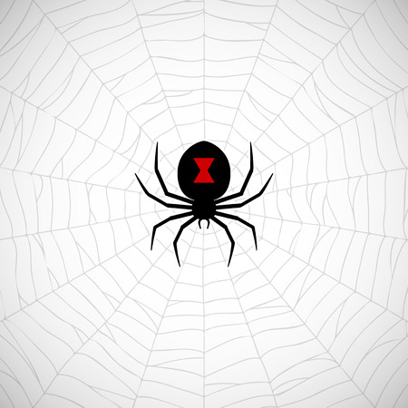 Araña Viuda Negro en la web