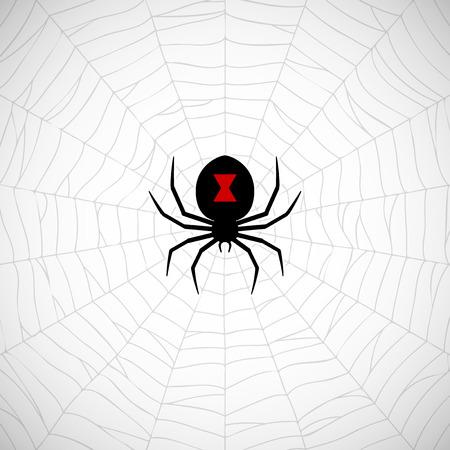 Spider Black Widow on web Vector