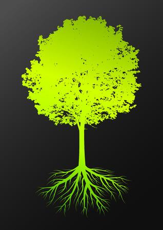 어두운 배경에 잎과 뿌리를 가진 나무 실루엣