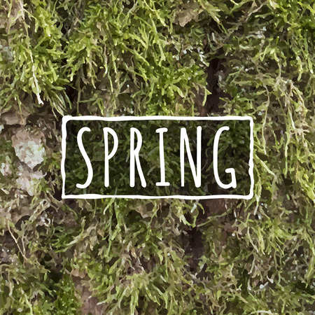 tree bark: Realistic Moss texture on bark with Spring text