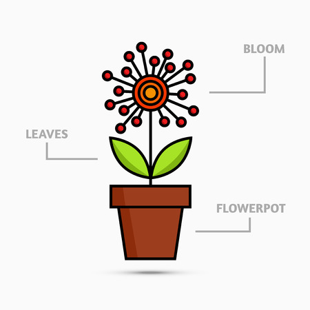 flowerpot: Flower in flowerpot with description