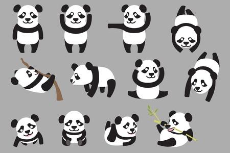 panda: various panda Illustration
