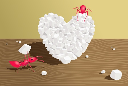 ants make a heart from sugar