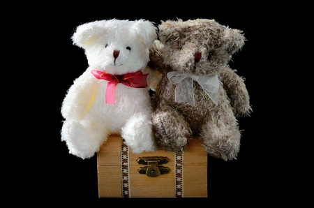 love couple bear