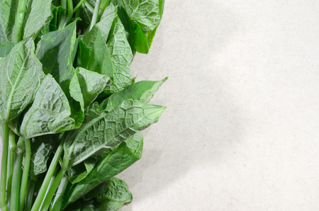 chinese spinach: fresh asian spinach on the left wooden board