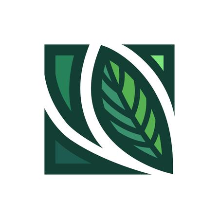 vector leaves logo or icon for brochure banner or publication Illustration