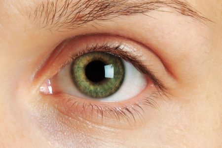 Macro photo of a green eye Stock Photo - 6345591