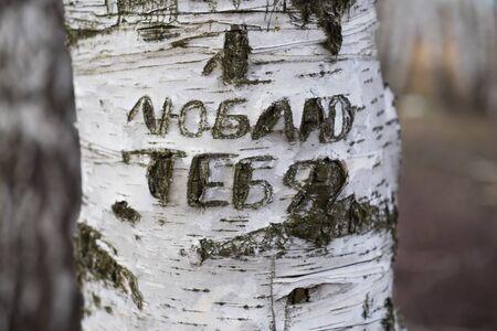 nscription on a tree I love you