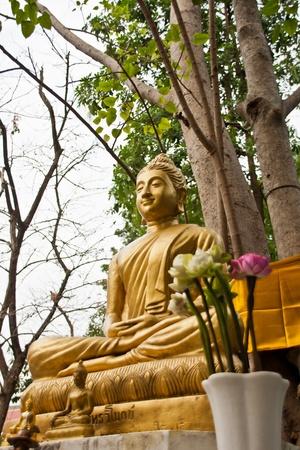 idolatry: buddha statue under the bodhi tree in wat phra si Stock Photo