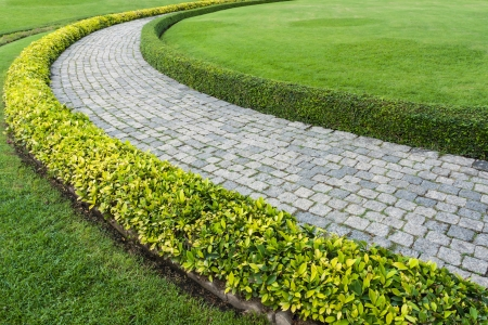 The Stone block walk path with green grass