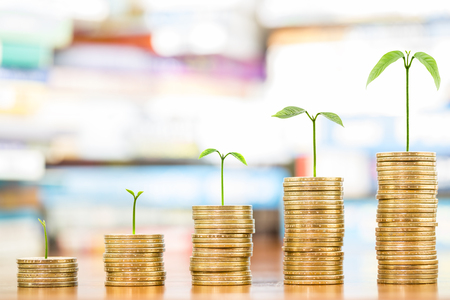Tree growing on one dollar coins arranged as a graph on wood table with pile of books as background, concept of educational advancement and saving money