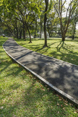 Old biking path with shadow of tree branch on green grass and sprinkler spray in the public park Imagens