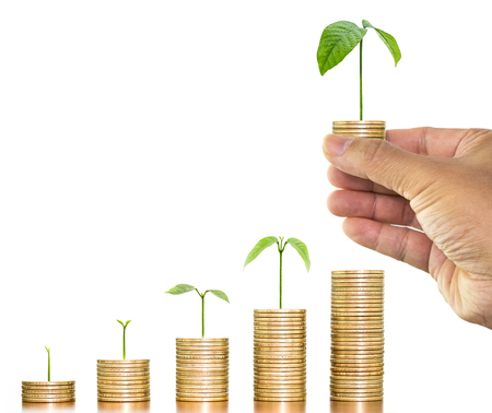 Money growing plants on money coins stack arranged as graph with man hand holding money coin with tree growing over stack of money coin on white background
