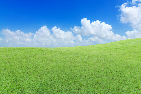 Green lawn with cloud and blue sky Imagens