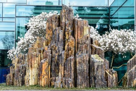 Kolorowe rodzimy bazalt skalista w Seattle, Washingrton