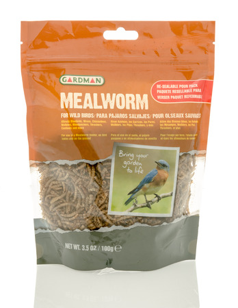protien: Winneconne, WI - 18 May 2016:  Bag of dried mealworms for birds made by Gardman on an isolated background