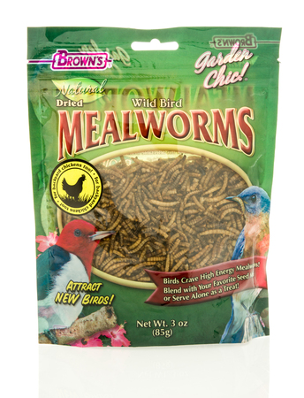 mealworm: Winneconne, WI - 18 May 2016:  Bag of dried mealworms for birds made by Browns on an isolated background Editorial
