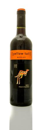 merlot: Winneconne, WI - 16 March 2016:  A bottle of Yellow Tail wine in merlot flavor.