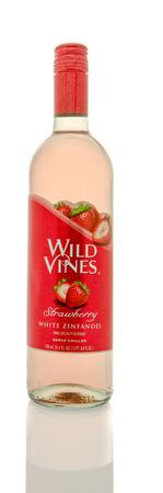 zinfandel: Winneconne, WI - 19 March 2016:  A bottle of Wild Vines white zinfandel in strawberry flavor