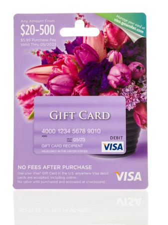 Winneconne、WI - 2016 年 5 月 25 日: 分離の背景に Visa ギフト デビット カード