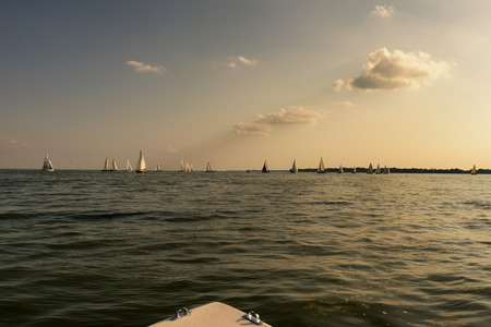 spinnaker: Fleet of sailboats enjoying a beautiful day.