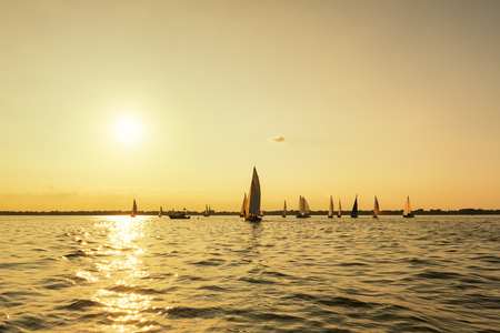 spinnaker: Bunch of sailboats enjoying a beautiful day