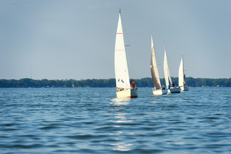 spinnaker: Four sailboats form a line while racing