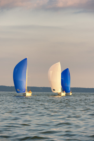spinnaker: Three sailboats form a line while racing