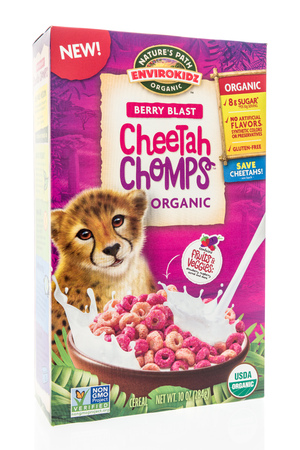 Winneconne, WI - 25 July 2018 - A box of Nature's Path Envirokidz berry blast cheetah chomps on an isolated background. Éditoriale