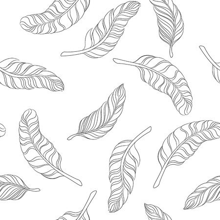 white feathers: seamless pattern black and white feathers