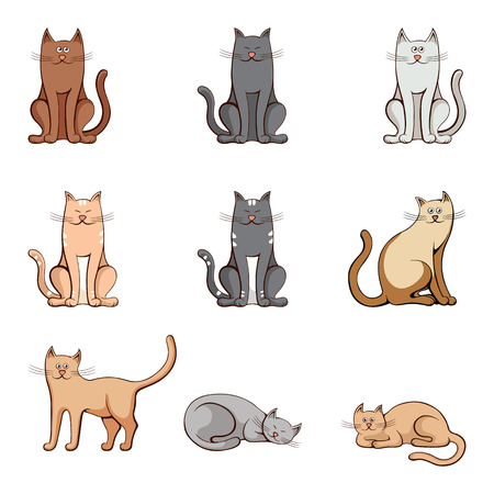 breeds: Set colored cats on white background. Vector illustration.