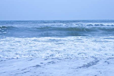 Flower sea waves