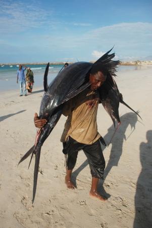 MOGADISHU, SOMALİA-APRİL 29, 3013: Fishermen at the port of Mogadishu