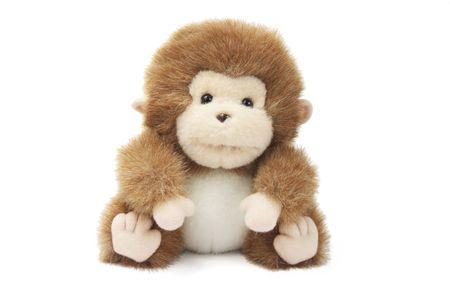 cuteness: Soft Toy  Monkey on White Background